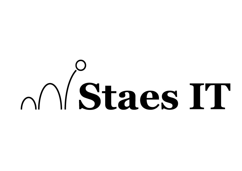 logo Staes IT